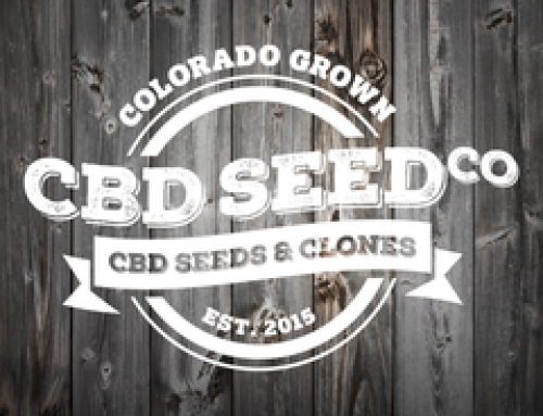Off and Running: CBD Seed Co. Enjoys a Great Start to the New Year